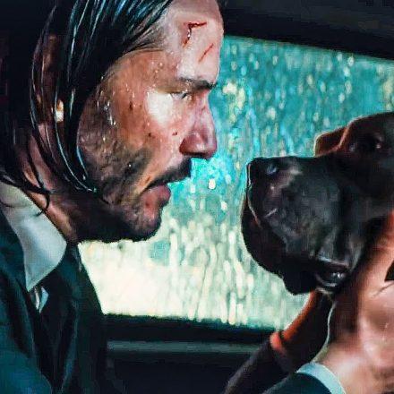 John Wick 3: Köpeği için dünyayı yakan adam geri dönüyor