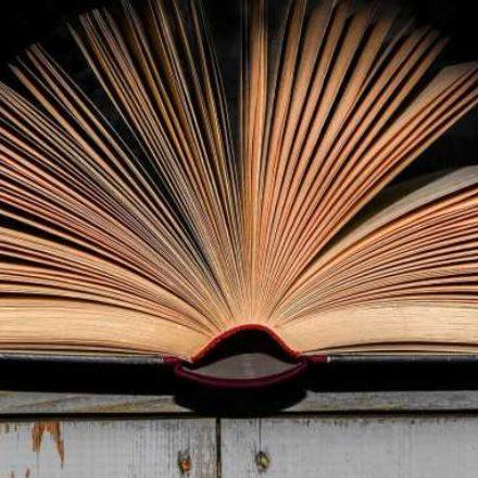 Yüzde 40 hiç kitap almıyor, yüzde 7'nin evinde bir tane bile kitap yok!